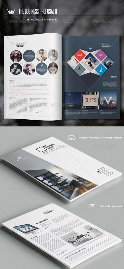 GraphicRiver The Business Proposal II