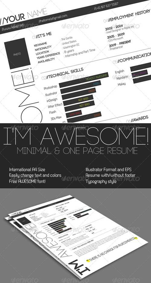 GraphicRiver One Page Minimal Resume