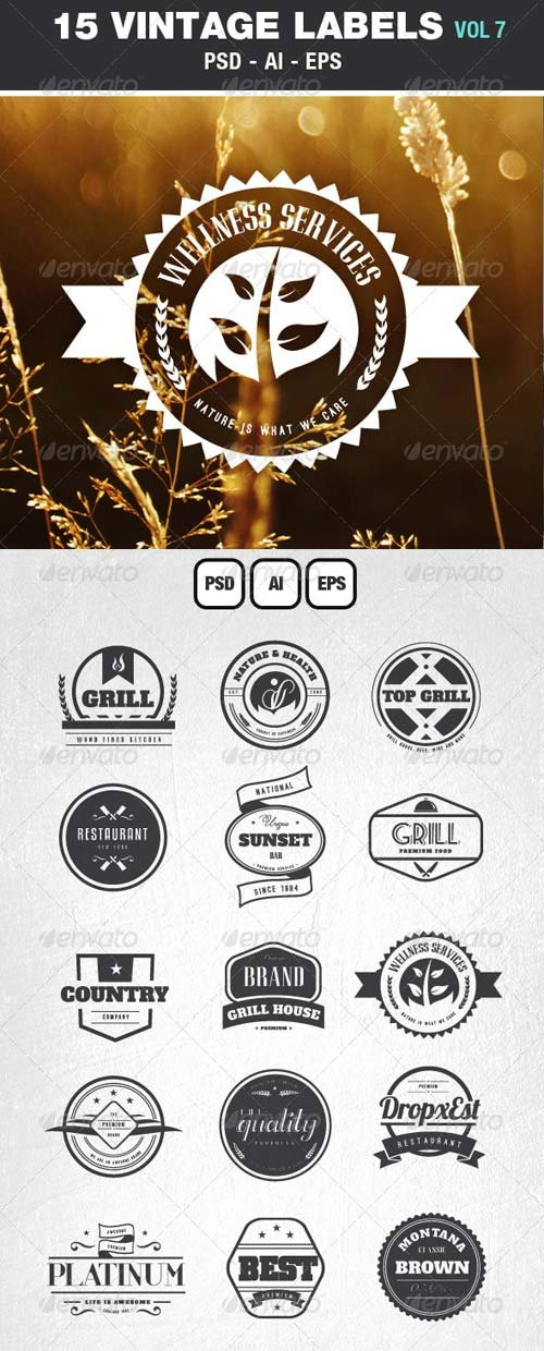 GraphicRiver Retro Vintage Labels & Badges Logos V7
