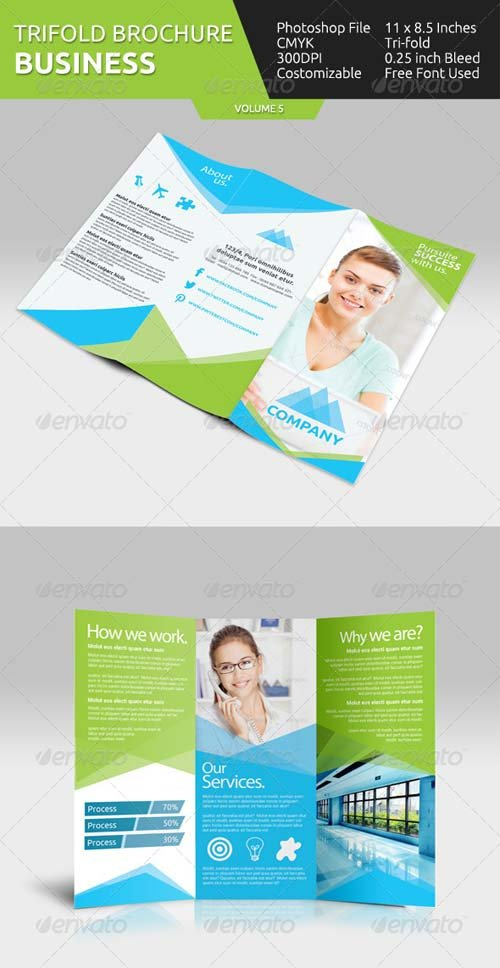 GraphicRiver Business Tri-fold Brochure - V5