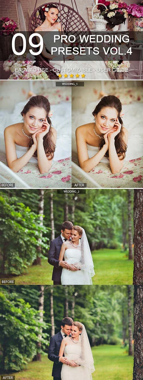 GraphicRiver 9 Pro Wedding Presets vol.4
