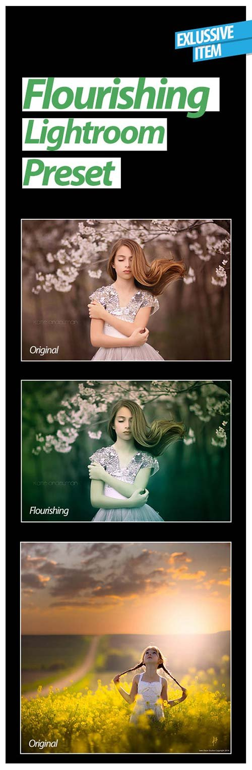 GraphicRiver Flourishing Lightroom Preset