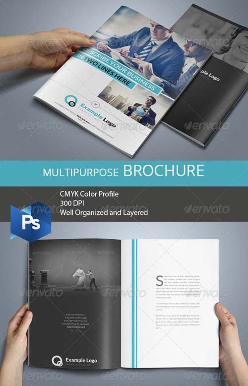 GraphicRiver Multipurpose Business Brochure