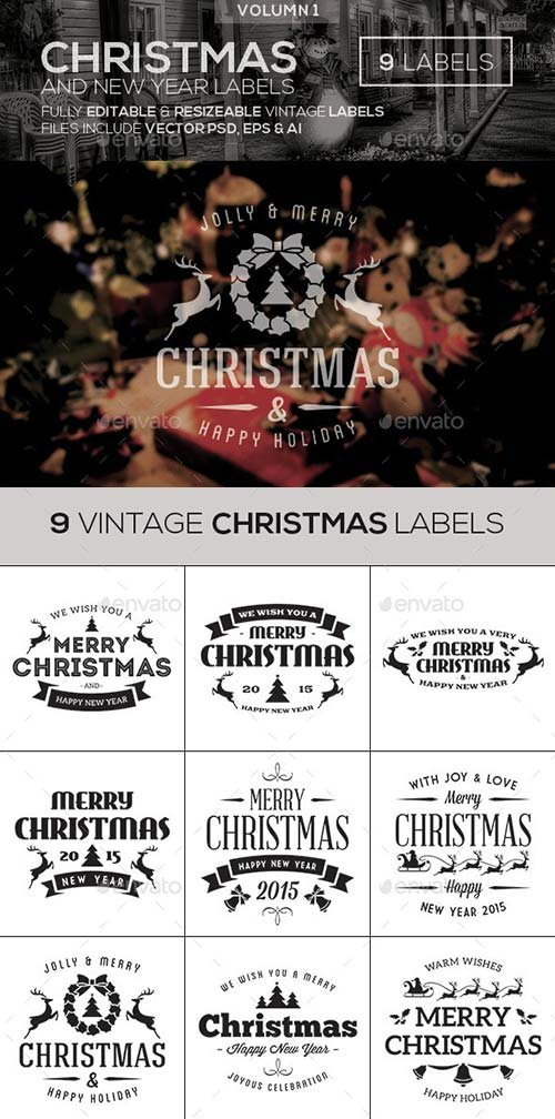 GraphicRiver Christmas & New Year Vintage Labels