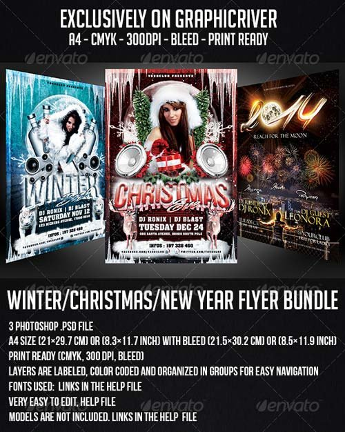 GraphicRiver Winter / Christmas / New Year Flyer Bundle