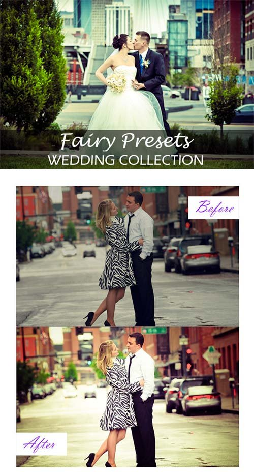 CreativeMarket LR Wedding Collection