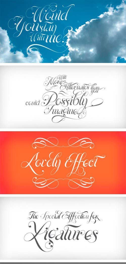 Hipster script pro font shepia script font isabella script font