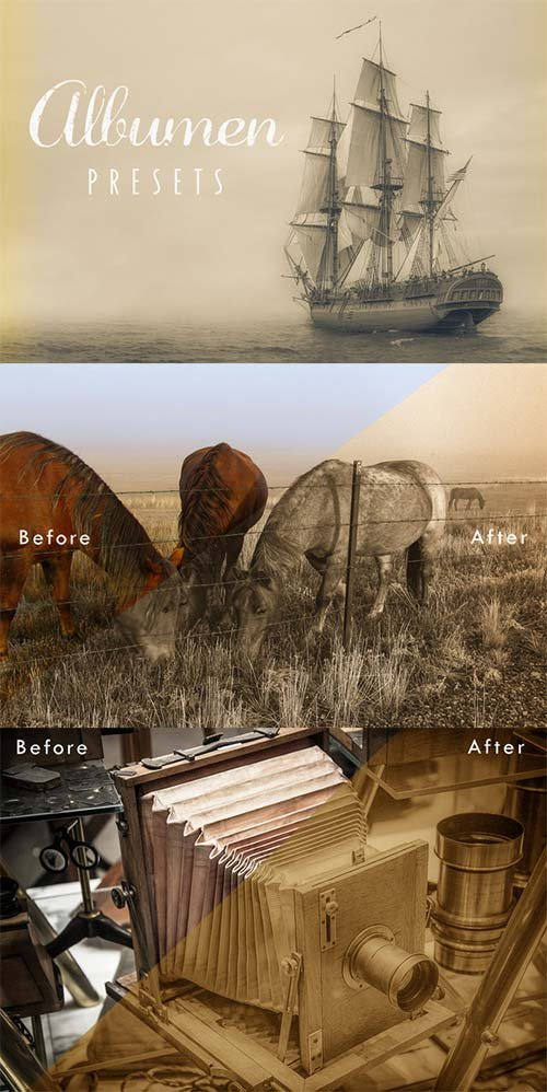 CreativeMarket Albumen Lightroom Presets