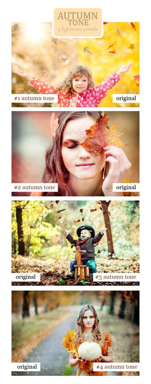 GraphicRiver Autumn Tone - 4 Lightroom Presets