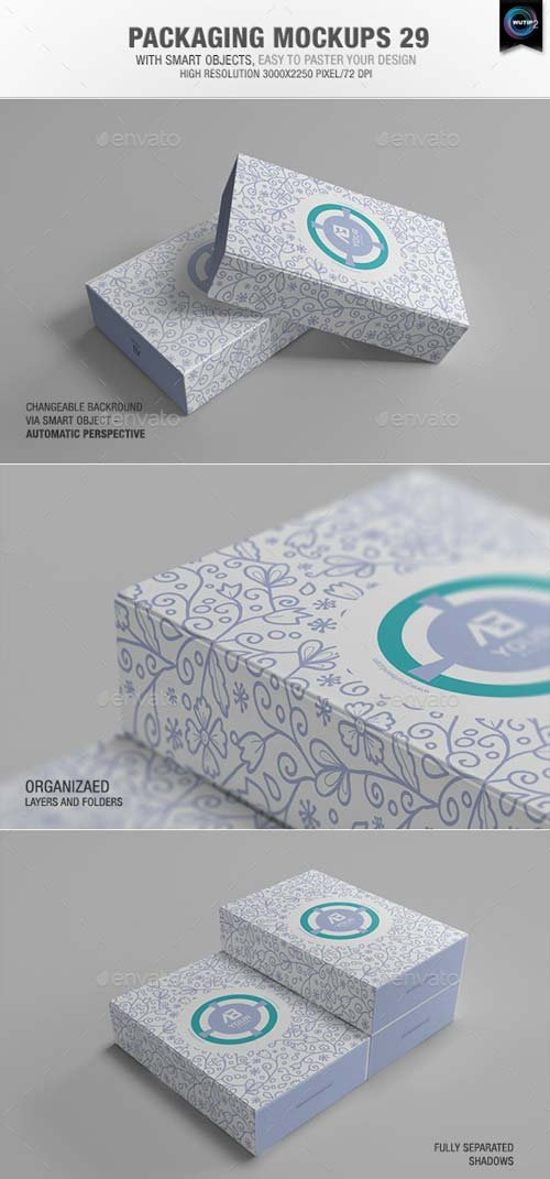 GraphicRiver Packaging Mock-ups 29