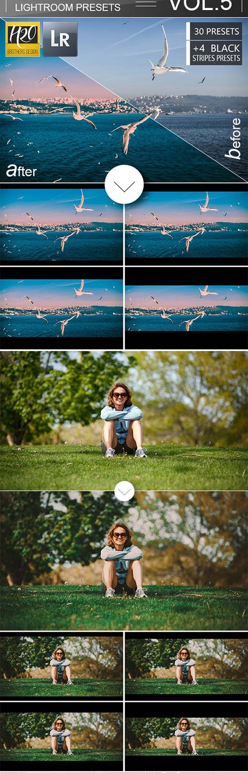 GraphicRiver 30 Cinematic Film Look Lightroom Presets VOL.5
