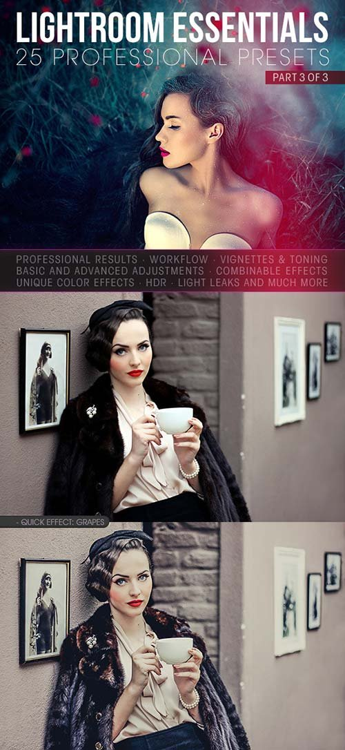 GraphicRiver 25 Essential Lightroom Presents - Part 3